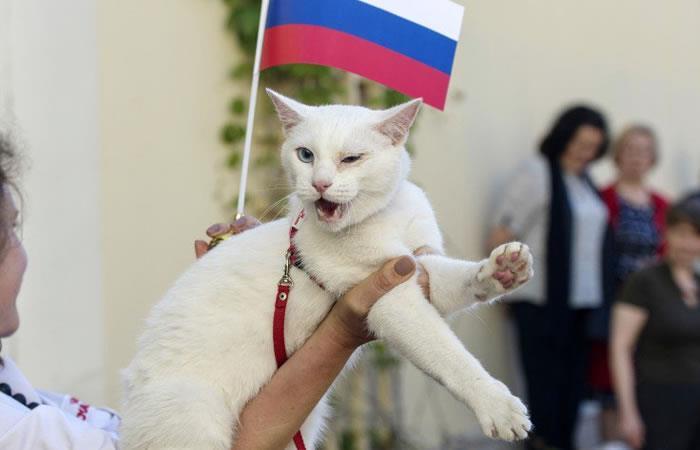 Mundial Rusia 2018: 'Aquiles', el oráculo que reemplazó al pulpo Paul