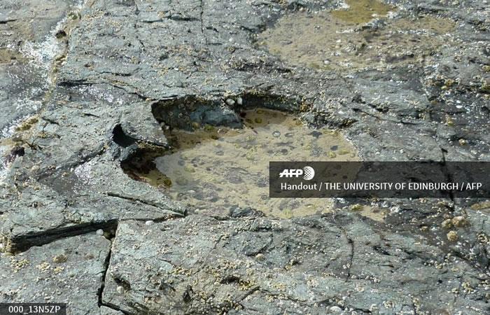 Escocia: Encuentran huellas de dinosaurios en la isla de Skye