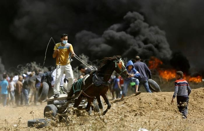 Un palestino conduce una carreta tirada por un caballo durante los enfrentamientos con las fuerzas israelíes. Foto: AFP