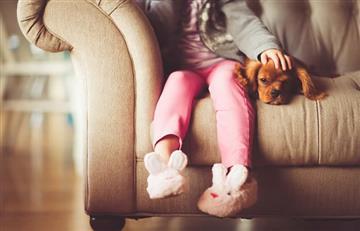 Juego de cartas mejora relación entre niños y sus mascotas