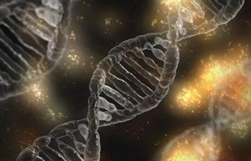 Análisis genético arroja luz sobre el origen del virus de la hepatitis B