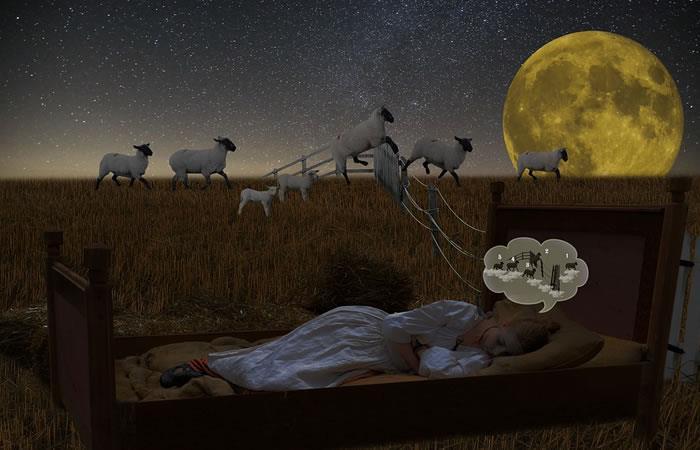 ¿Te gusta contar ovejas para dormir?