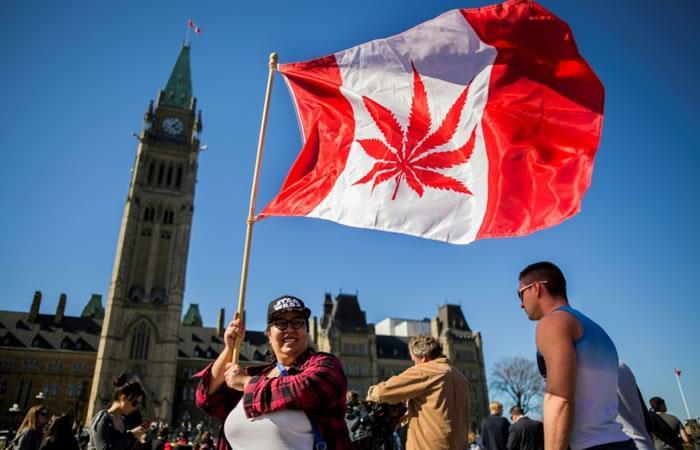 Una mujer ondea una bandera de Canadá con la hoja de marihuana frente al Parlamento en Ottawa. Foto: AFP