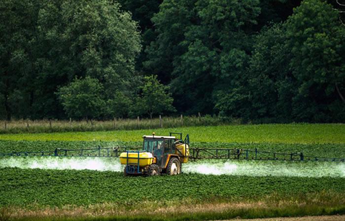 Drones con glifosato serán aplicados en cultivos de coca. Foto: AFP