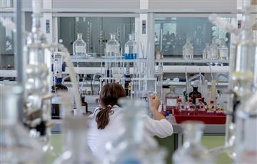 Mitos y realidades acerca de la terapia con células madre