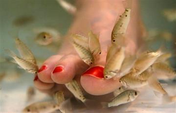 Mujer pierde todas las uñas de los pies tras una pedicura con peces