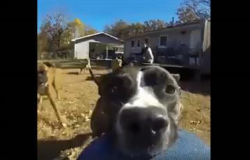 Viral: Perro se roba una cámara y su impresionante huida queda grabada