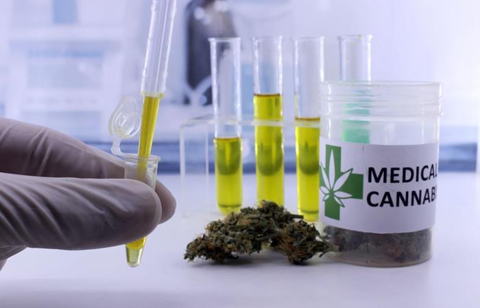 Cannabis medicinal, una visión de país