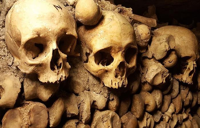 Hallan por primera vez restos de un niño nacido de dos especies humanas diferentes