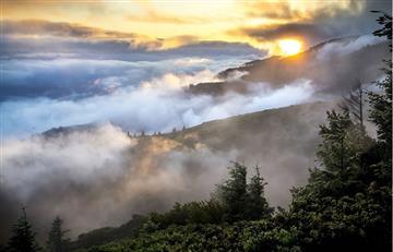 ONU lanza en Brasil iniciativa para ayudar a defensores ambientales del mundo