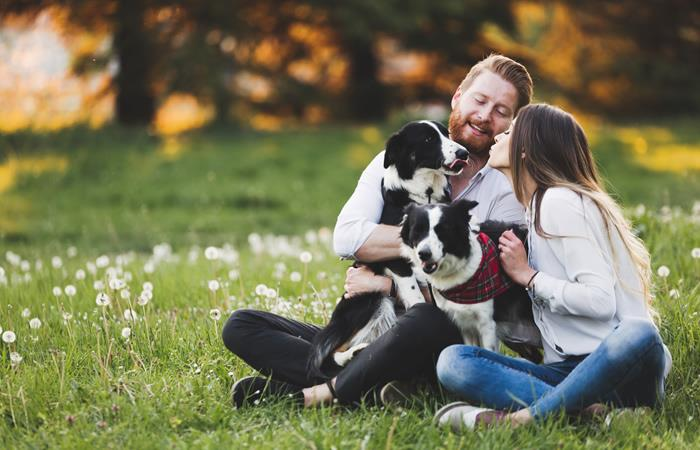 Perros reducen el estrés y disminuyen riesgos de ataques cardíacos a sus amos