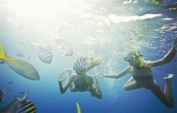 Curaçao: Cinco planes imperdibles en familia