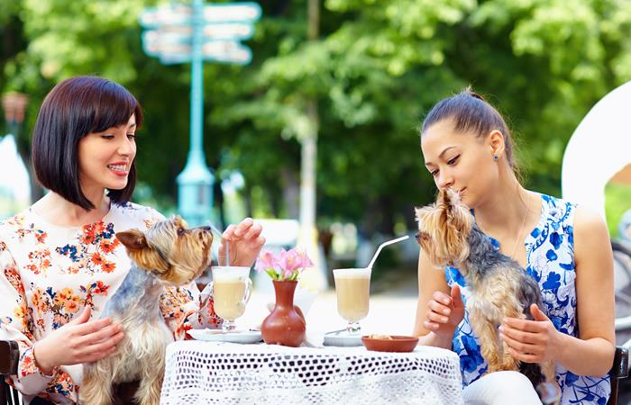 Restaurantes en Bogotá donde puedes llevar tu mascota