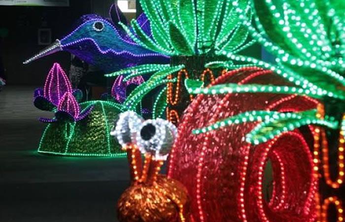 Medellín se iluminará por el medio ambiente en navidad. Foto: Facebook.