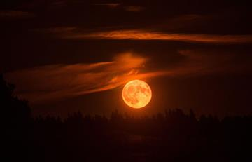 ¿Cuándo y en dónde se verá el primer eclipse del 2019?