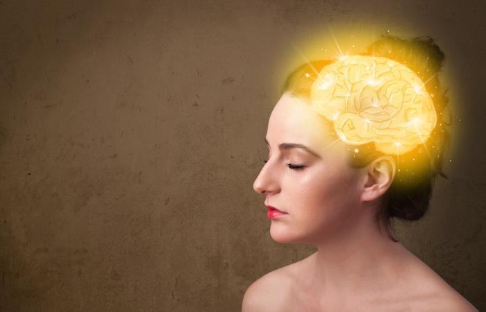 Seis meses de ejercicio mejora la salud del cerebro