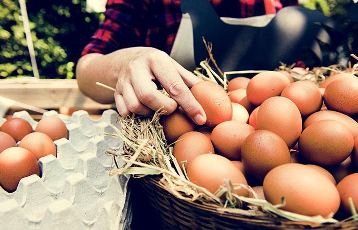 El huevo, la cáscara de la discordia