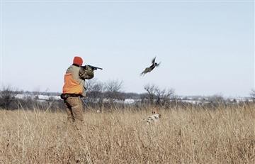 ¿Cuál fue la decisión de la Corte Constitucional en cuanto a la caza deportiva en Colombia?