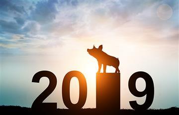 El Calendario Chino le da la bienvenida al año del cerdo