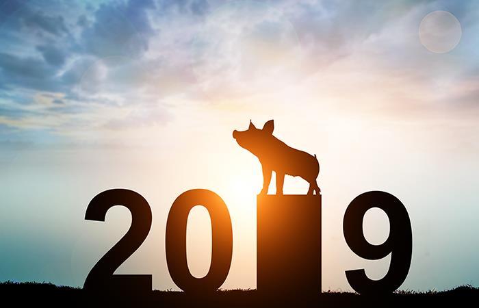 ¡El 2019 es tu año! Foto: Shutterstock