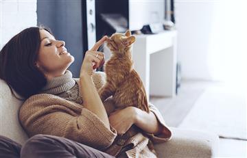 Los millennials prefieren tener mascotas que tener hijos