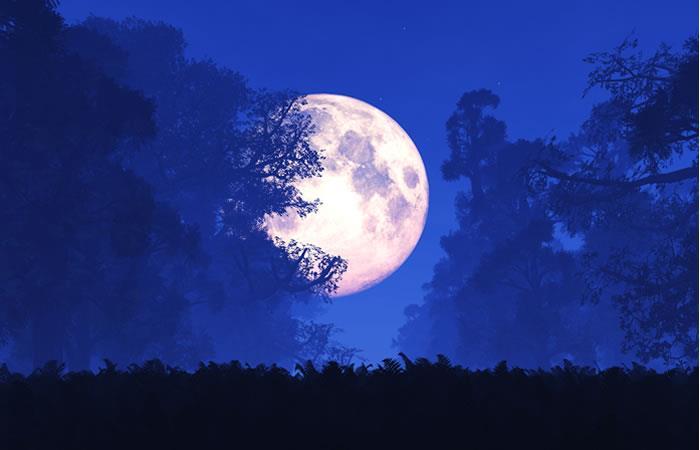 Eventos lunares de febrero seguirán hasta marzo. Foto: Shutterstock