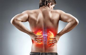 De esta forma podrás cuidar tus riñones y evitar enfermedades