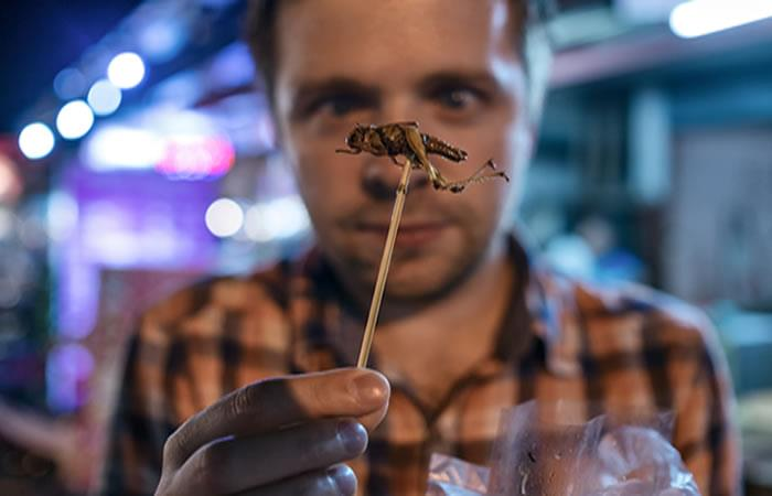 Cada país tiene algo de especial y algo raro en su gastronomía. Foto: Shutterstock