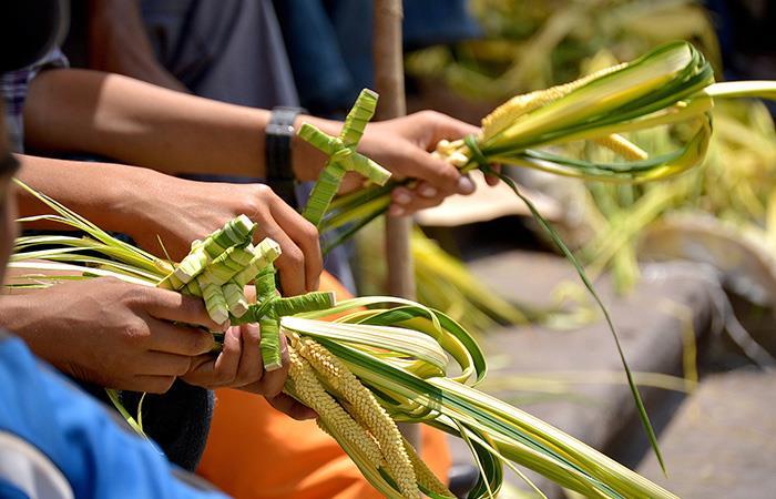 ¿Qué se celebra en el domingo de ramos? Foto: Pixabay