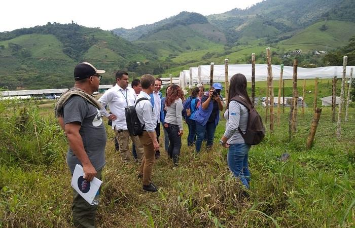 ONU y Colombia destinarán 9 mil millones de pesos para reincorporación de exguerrilleros de las FARC