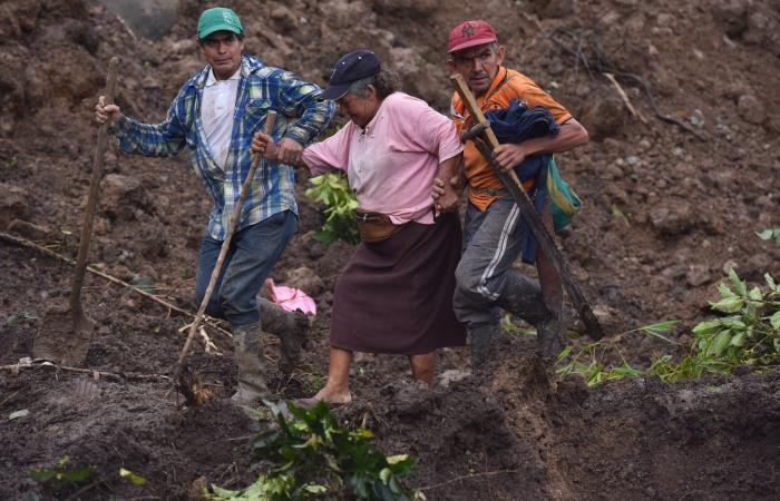 Civiles trabajan en las labores de búsqueda tras el derrumbe en Rosas, Cauca. Foto: EFE