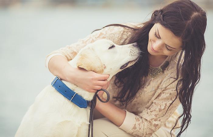 Estas actitudes de tu perro muestran que te quiere