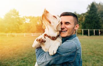 10 razones por las que el perro es catalogado 'el mejor amigo del hombre'