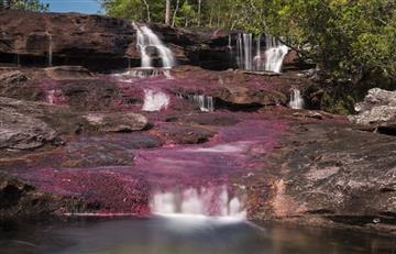 Reabren Caño Cristales al turismo nacional