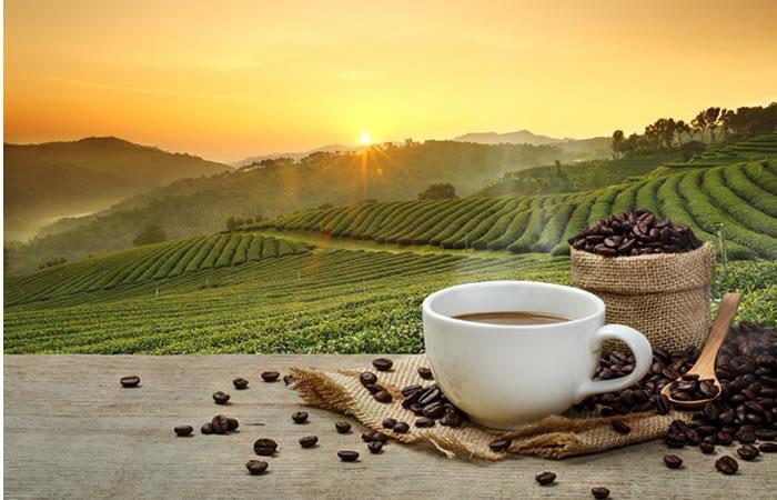 ¿Cuántas tazas de café son 'demasiadas' para el organismo?
