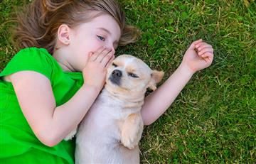 ¡Comprobado! Las personas que hablan con los perros son más inteligentes que las demás