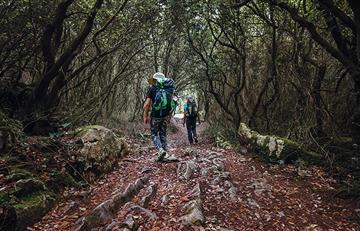 Descubre Camino de Santiago de una manera más sustentable