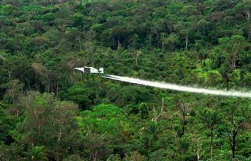Glifosato en Colombia: Siete puntos que debes conocer sobre esta polémica en el país