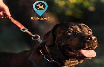 Que tu perrito no sea #ForeverAlone esta es 'Wakypet' la 'app' para conocer compañeros de paseo