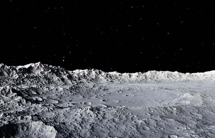 Estos 'animalitos' podrían estar viviendo en la Luna