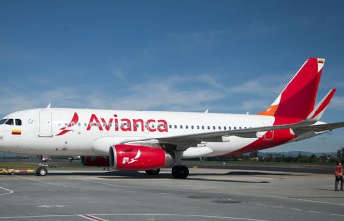 Avión de referencia Airbus A319. Foto: Twitter