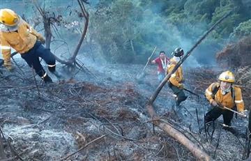 En 24 horas se han registrado 22 incendios forestales en Colombia