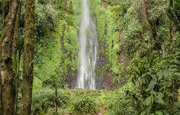 Pereira se convierte en pionera del turismo natural en Colombia