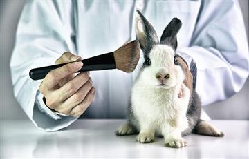 ¿Con esta técnica se acabarían las pruebas de los cosméticos en animales?