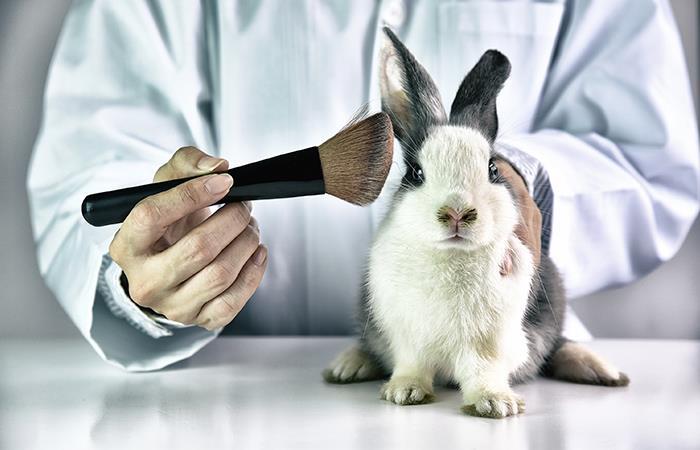 ¿Existe una nueva técnica para realizar las pruebas de los cosméticos?