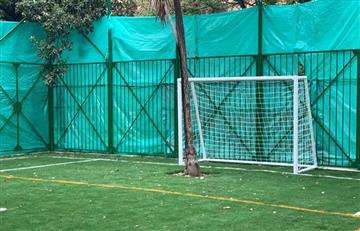 """Cancha sintética en parque Japón (Bogotá) tiene dos árboles como """"arqueros"""""""