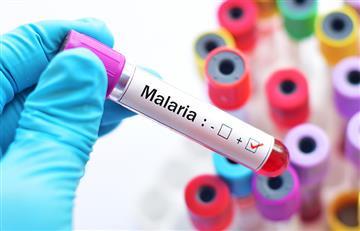 La malaria tendría cura para el año 2050