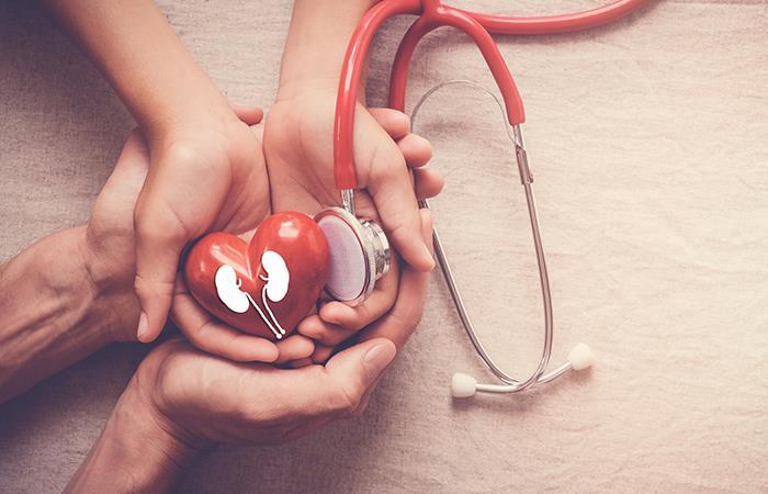 Los riñones y el corazón son los órganos más afectados