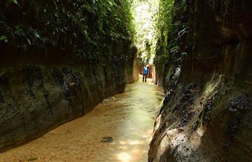 Descubre los atractivos naturales de Caquetá: Reserva 'Las Dalias'