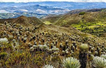 Páramo de Ocetá: el mejor atractivo natural de Boyacá